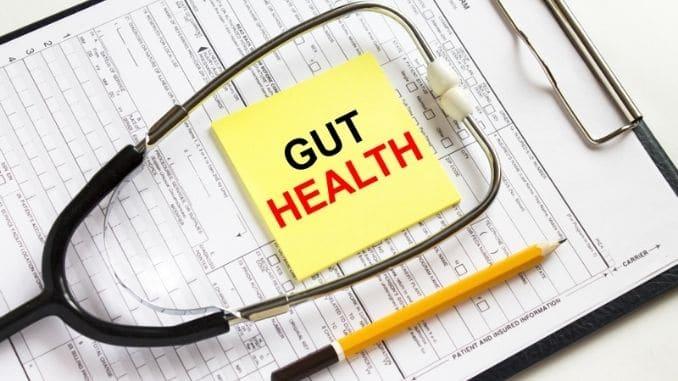 Text Gut Health